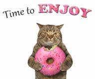 猫吃一个桃红色多福饼 免版税库存照片
