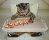 猫吃在床上的虾 库存图片