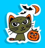 猫和南瓜 免版税库存图片