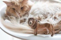 猫和塑料玩具狮子 库存照片