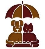 猫和狗在伞下 免版税库存照片