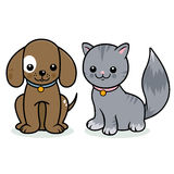 猫和狗宠物 免版税库存照片