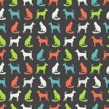 猫和狗的动物无缝的传染媒介样式 免版税库存照片