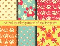 猫和狗脚印 库存照片