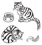猫和老鼠用乳酪 图库摄影