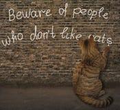 猫和街道画 库存图片