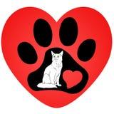 猫和轨道 免版税库存图片