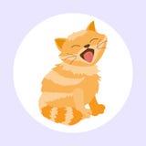猫品种逗人喜爱的小猫红色宠物画象蓬松幼小可爱的动画片动物和俏丽的乐趣演奏似猫的坐的哺乳动物 皇族释放例证