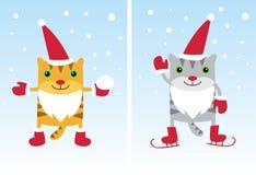 猫圣诞老人 库存图片