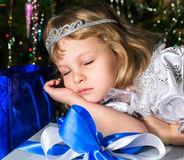 猫圣诞节梦想家基石休眠温暖的视窗 库存图片