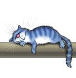 猫在一支温暖的管说谎 库存图片