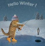 猫在冬天2抓了一条鱼 库存照片