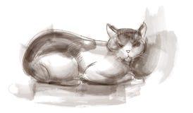 猫坐的草图 免版税库存图片