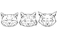 猫头剪影在现实样式的 被设置的猫,传染媒介例证,手拉的逗人喜爱的蓬松猫 皇族释放例证