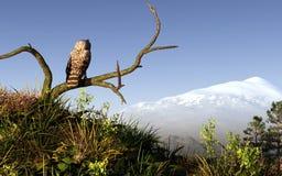猫头鹰和山 皇族释放例证