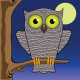 猫头鹰和月亮 免版税库存照片