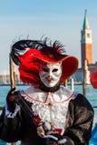 猫威尼斯式狂欢节的加工好的参加者 库存照片