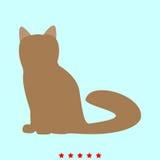 猫它是象 库存图片
