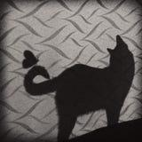 猫影子 库存图片