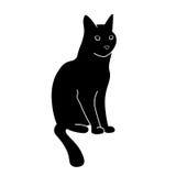 猫感兴趣查出的看起来被射击的坐的工作室白色 库存图片