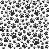 猫或狗爪子背景 向量 免版税库存图片