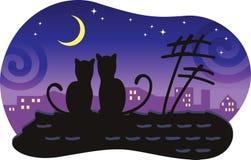猫房子恋人顶房顶坐 免版税库存照片