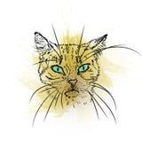 猫手拉的画象与水彩污点的 免版税库存照片