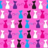 猫无缝的样式和无缝的样式在swatc 库存照片
