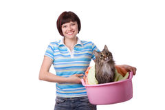 猫日坏的洗衣店时间 免版税图库摄影
