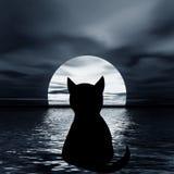 猫月亮晚上照片 向量例证