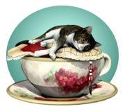 猫杯子灰色n平纹 库存照片
