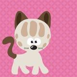 猫标号 免版税库存照片