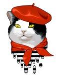 猫法国人 图库摄影