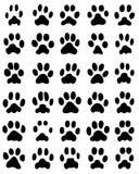 猫爪子印刷品  库存照片