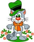 猫爱尔兰语 免版税库存照片