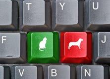 猫狗热键盘键 库存图片
