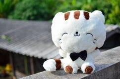 猫玩偶 免版税库存图片