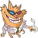 猫生物,穿衣服夹克,拿着雪茄 库存图片