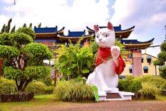 猫的一个大雕象象征古晋市,首都沙捞越 免版税图库摄影