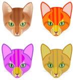 猫的五颜六色的头 向量例证