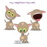 猫的传染媒介例证 库存照片