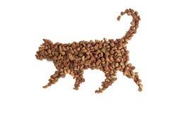 猫的食物 库存照片