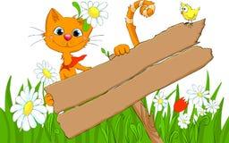 猫索引路 免版税库存图片