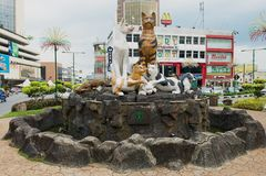 猫纪念碑在街市古晋,马来西亚 库存照片