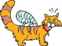 猫蚤有 免版税库存照片