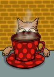 猫观看他的咖啡杯 免版税库存图片
