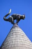 猫议院在里加 库存图片