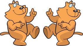 猫跳舞 免版税库存照片