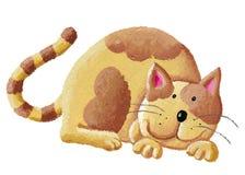 猫逗人喜爱的桔子 库存照片