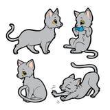 猫逗人喜爱的灰色 库存例证